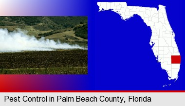 Critter Control Palm Beach County